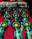 BASC North provided lots of prizes!